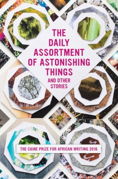 daily-assortment-of-astonishing-things